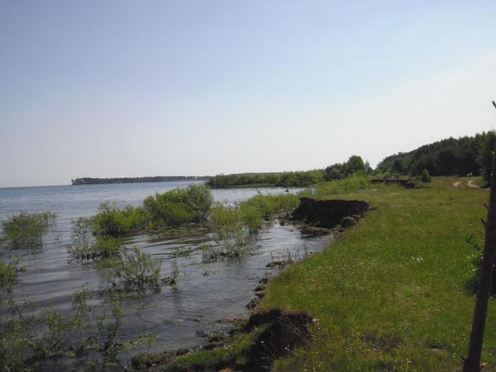 Рыбинскоое вдхр., июнь 2010 г., ЖАРА